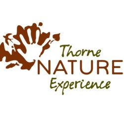 Thorne Nature Experience Summer Camp