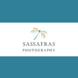 Sassafras Photography