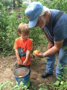 Gardening with PopPop.